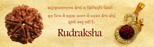 Sacred Rudraksha