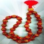 7 Mukhi Rudraksha Kantha (Lakshmi Kantha)