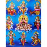 Navgraha (Nine Planets) Shanti & Dosha Nivaran Puja