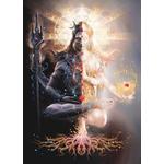 Shiva Shakti Puja and Homa (Shiv Shakti Yagya)