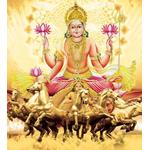Surya (Sun) Shanti & Dosha Nivaran Puja