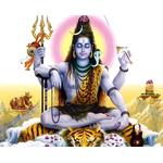 Shiv Maha Puran Katha