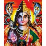 Ardhnarishwar Puja and Homa