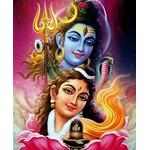 Gauri Shankar Puja and Homa